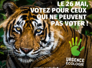 Visuel de campagne de la liste Urgence écologie, élections européennes